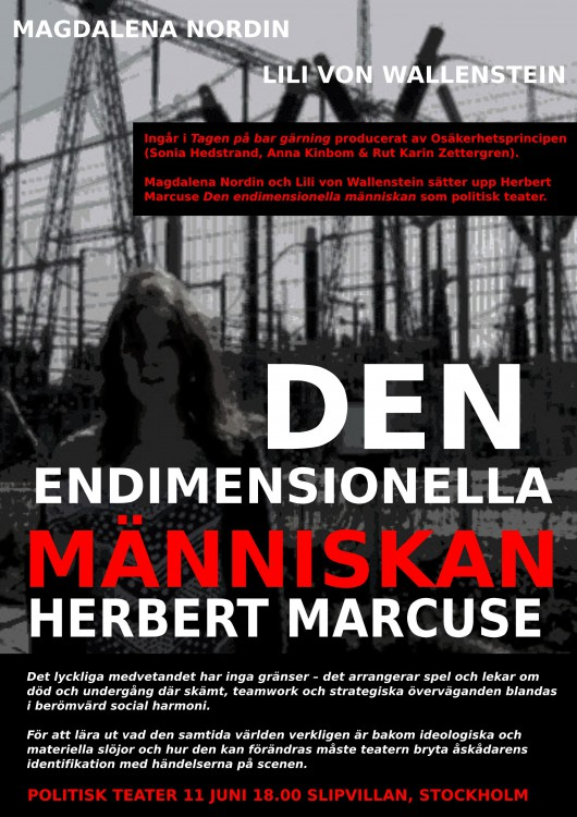 DEN-ENDIMENSIONELLA-MÄNNISKAN-FLYER2-page001